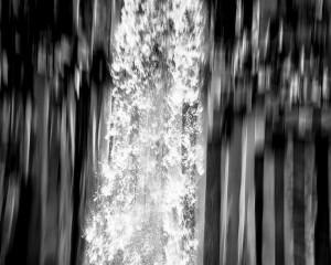 Water falls from Svartifoss over basalt columns.